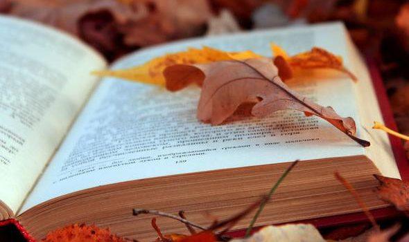 Πρόγραμμα Σπουδών του μαθήματος «Νεοελληνική Γλώσσα και Λογοτεχνία» των Α' και Β' τάξεων Γενικού Λυκείου